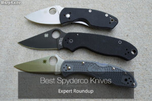 Best Spyderco Knives