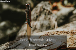 Best Bushcraft Knives